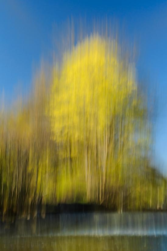 Digital Impressionism Nikon D5100, Sigma 17-70mm f/2.8-4, 1/5s, 38mm, f/20, ISO 100