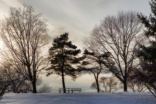 Winter Arrives Nikon D5100, Nikkor 35mm f/1.8, 1/2000s, f/5.6, ISO 200