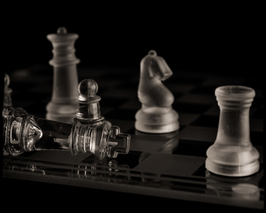 Checkmate Nikon D5100, Sigma 17-70mm f/2.8-4, 1/200s, 58mm, f/8, ISO 100, flash