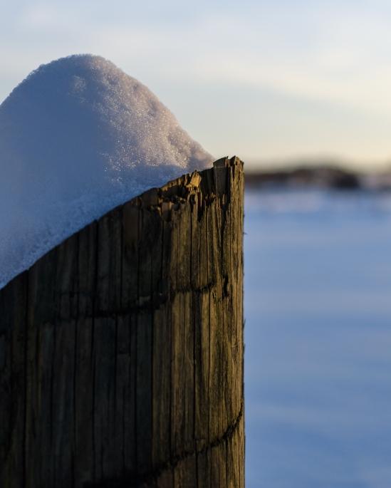 Golden Snow Cap Nikon D5100, Nikkor 35mm f/1.8, 1/1000s, f/2.8, ISO 100