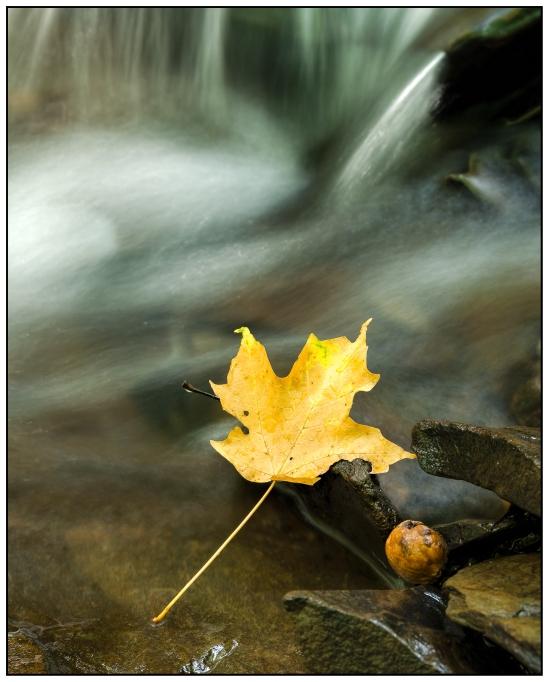 Autumn Falls Nikon D5100, Sigma 17-70mm f/2.8-4, 2.5s, 35mm, f/11, ISO 100