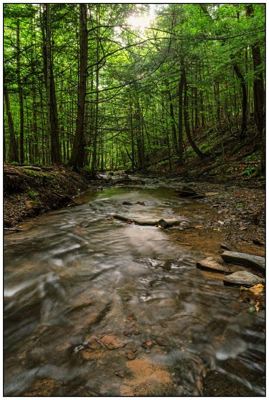 Creek Walk Nikon D5100, Sigma 17-70mm f/2.8-4, 4s, 17mm, f/11, ISO 100