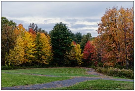 Gloomy Autumn Colors Nikon D5100, Nikkor 35mm f/1.8, 1/250s, f/8, ISO 200