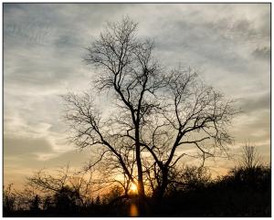 Sunset Silhouette Nikon D5100, Nikkor 24-85mm f/3.5-4.5, 1/640s, 26mm, f/11, ISO 400