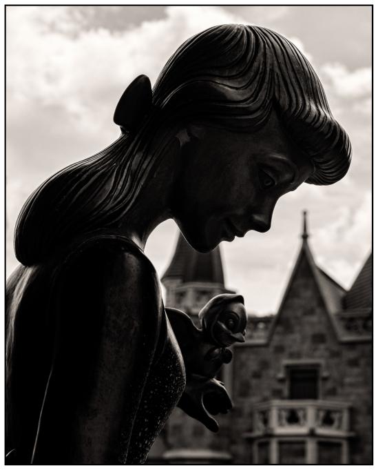 Contemplative Cinderella Nikon D5100, Nikkor 24-85mm f/3.5-4.5, 1/800s, 46mm, f/8, ISO 400