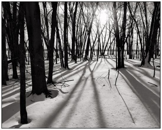 Long Shadows 2 Nikon D5100, Sigma 17-70mm f/2.8-4, 1/400s, 17mm, f/11, ISO 200