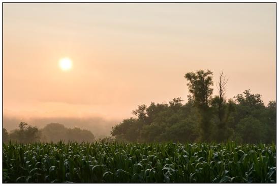 Shrouded Sunrise Nikon D7100, Sigma 17-70mm f/2.8-4, 1/25s, 46mm, f/20, ISO 100