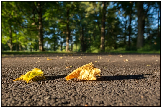 iheartchallenge-two Nikon D7100, Sigma 17-70mm f/2.8-4, 1/60s, 17mm, f/5.6, ISO 200