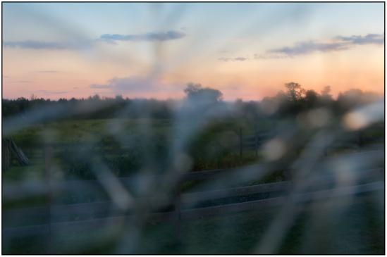 iheartchallenge-blurry Nikon D7100, Sigma 17-70mm f/2.8-4, 1/80s, 24mm, f/8, ISO 800