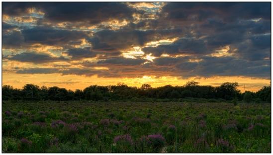 Marsh Sunset Nikon D7100, Sigma 17-70mm f/2.8-4, {1/50, 1/100, 1/200, 1/400 & 1/800 bracket}, 35mm, f/11, ISO 200