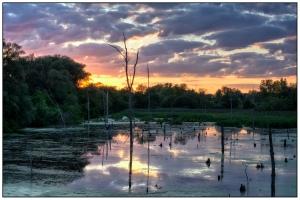 Swamp Colors Nikon D7100, Sigma 17-70mm f/2.8-4, {1/5, 1/10 & 1/20s bracket}, 42mm f/16, ISO 100