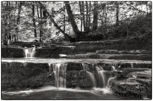 ...only the water and the leaves Nikon D7100, Tokina 12-28mm f/4, 1/2s, 28mm, f/16, ISO 100