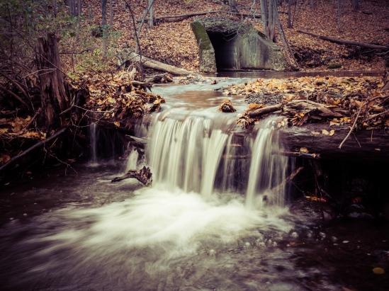 Backyard Falls Olympus OM-D E-M1, M. Zuiko 12-40mm f/2.8, 1/4s, 21mm, f/16, ISO 200